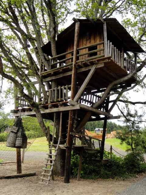 lost boys tree house | Keeping up with the Roloff family