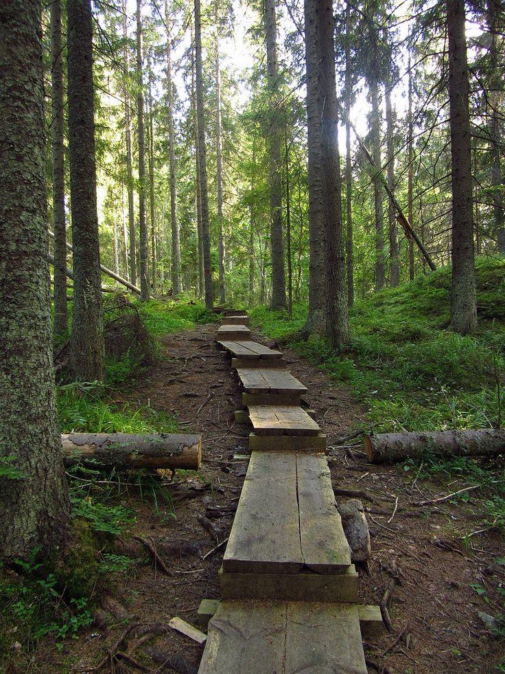 Karnaistenkorven luontopolku, Pitkospuut #Lohja #Finland