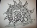 shell done in dots with indian ink