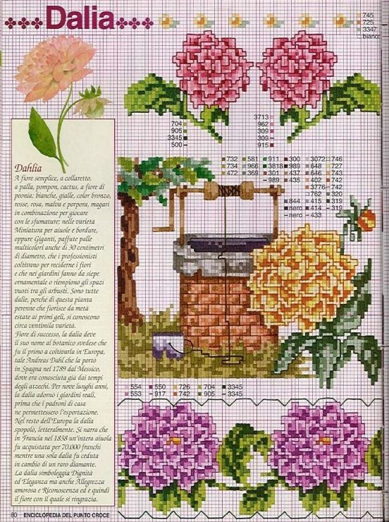 Gallery.ru / Фото #101 - Ботаника-цветы - irislena