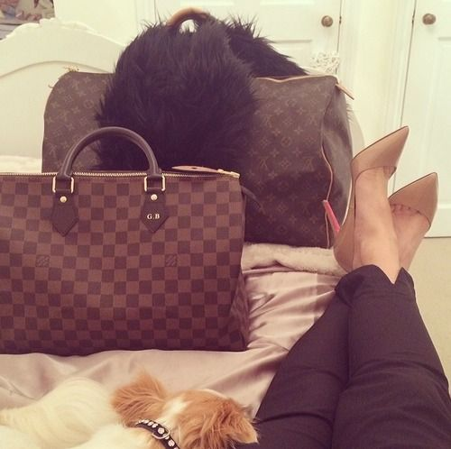 Louis Vuitton #speedy #damierebene