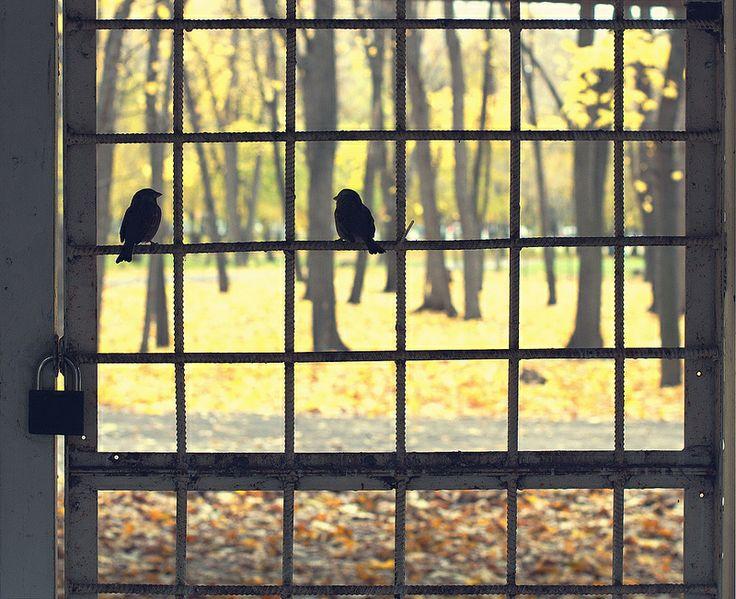 _Пусть закрытые двери не имеют для нас значения...