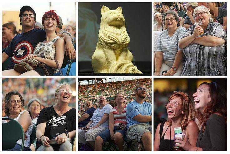 Internet Cat Video Festival 2015 — Calendar — Walker Art Center
