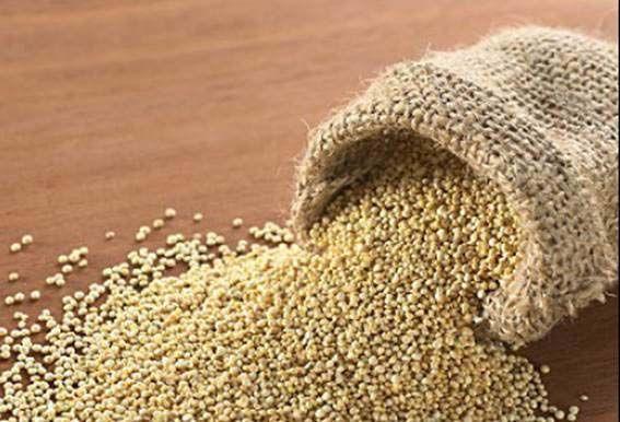 La quinoa (Chenopodium quinoa) o quinua es una hierba anual comestible de la familia de las amarantáceas, que no se puede considerar un cereal, ya que tiene más parentesco con la espinaca que con el arroz o el trigo. Procede de algunas zonas de América del Sur, como Perú  ...