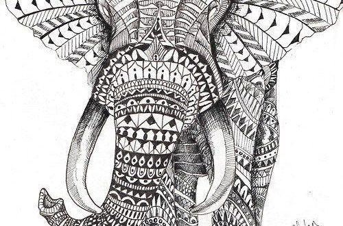 16 malvorlagen elefant mandala zum drucken mehr  pinbest