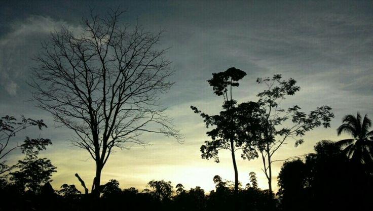 morning Lampung