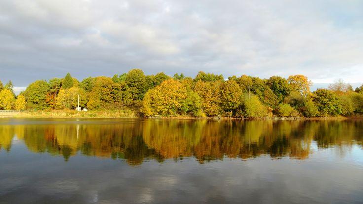 Mireloup pond, Le Tronchet, Ille-et-Vilaine, Brittany, France | Photo by Ayuna Skol Ofenstrü (November 2013) #automne #autumn #foret #arbres #trees #bretagne #etang