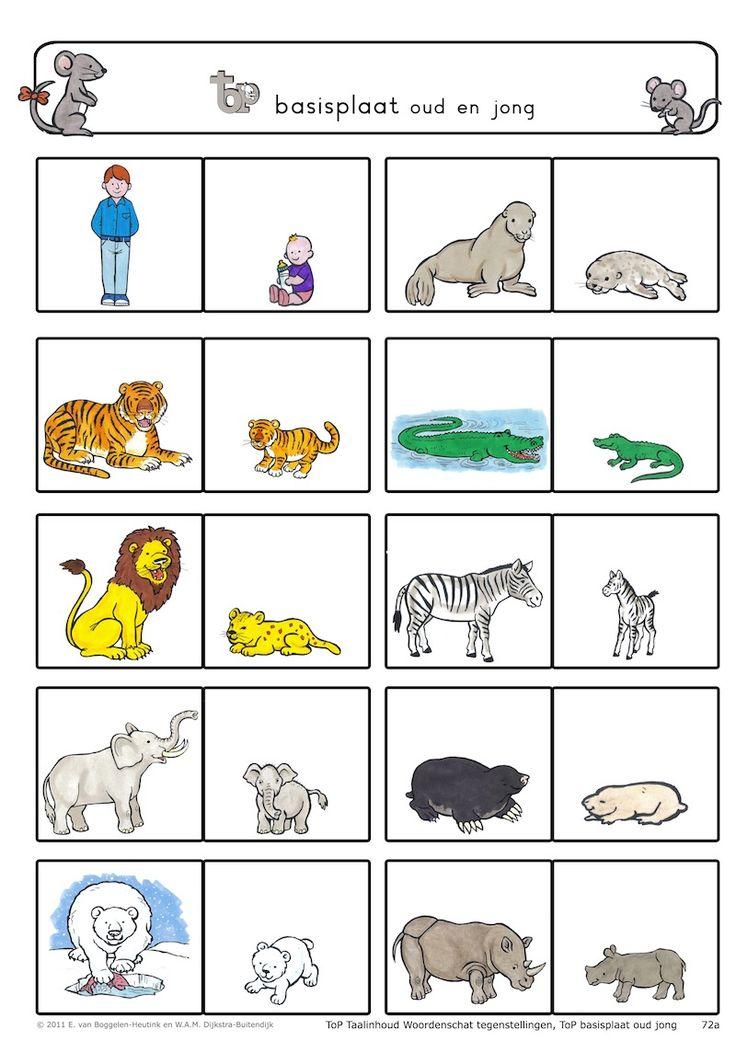Verkleinwoorden Dieren Google Zoeken Dieren