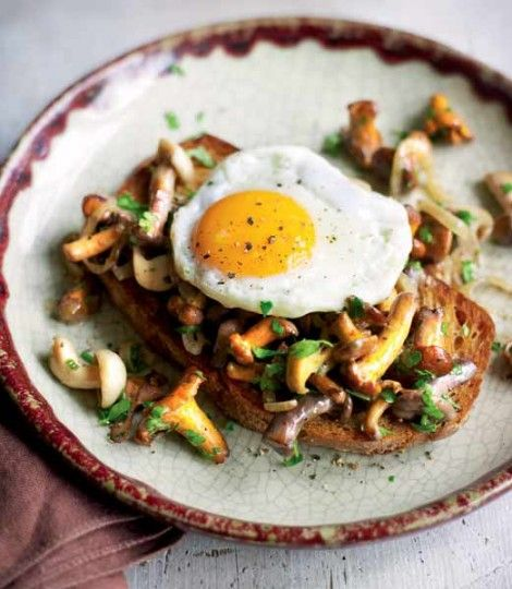 Mushrooms on toast with a fried egg