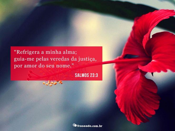 Refrigera minha alma; guia-me pelas veredas da justiça, por amor do seu nome. Salmos 23:3