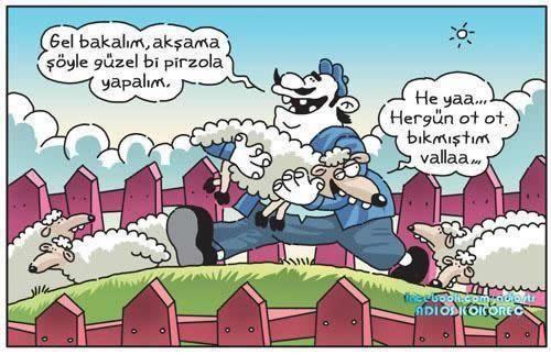 Komik Karikatür Resimleri