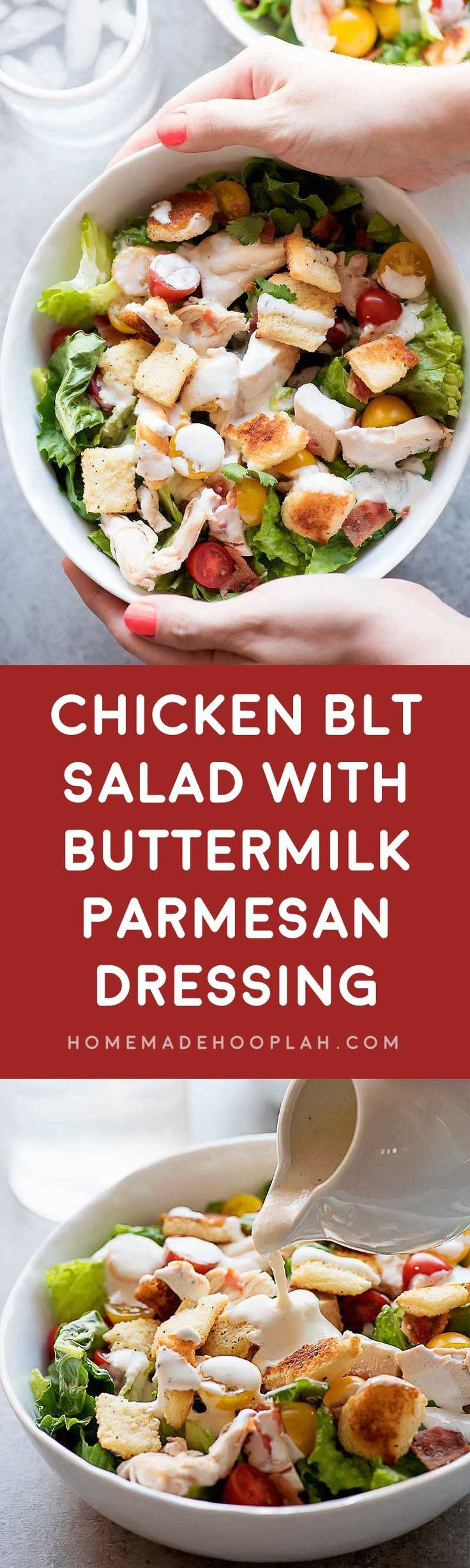 Chicken BLT Salad with Buttermilk-Parmesan Dressing! Tasty chicken, leafy greens, plump tomatoes, crispy bacon, and homemade buttery croutons covered with a rich buttermilk-parmesan dressing. Perfect as a dinner salad or appetizer! | HomemadeHooplah.com