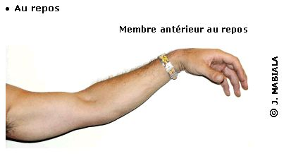 http://www.maxicours.com/se/fiche/0/3/19503.html