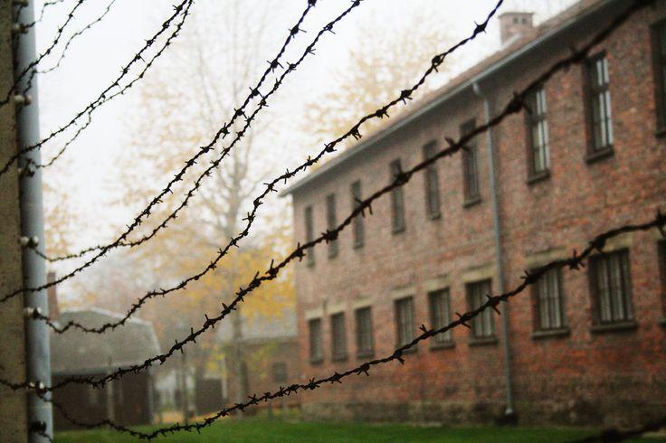 Auschwitz I. Block 23.