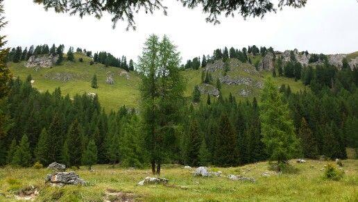 Malga vallesin    Malga Vallesinella Trento Italy