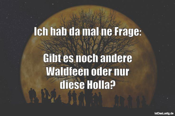 Ich hab da mal ne Frage: Gibt es noch andere Waldfeen oder nur diese Holla? ... gefunden auf https://www.istdaslustig.de/spruch/2451 #lustig #sprüche #fun #spass