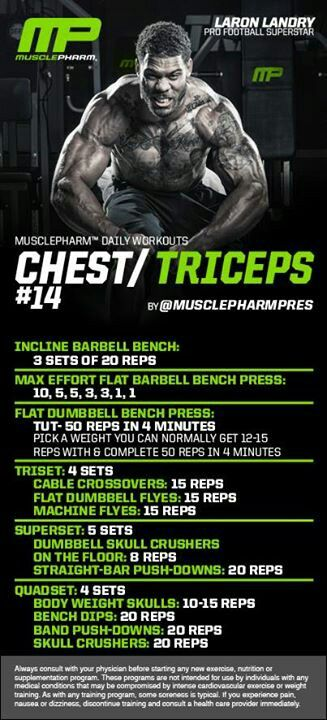 MP-Chest/Triceps #14