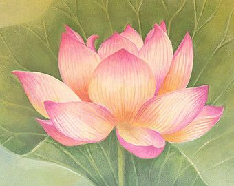 Pink Lotus Flower Watercolor Painting Art Print, Children Art, Nursery Decor, Nature watercolor, Floral, Lotus watercolor.
