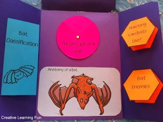 FREE All About Bats Lapbook