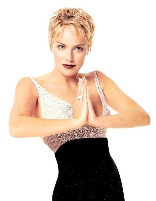 1000 id es sur le th me sharon stone hair sur pinterest for Coupe de cheveux sharone stone