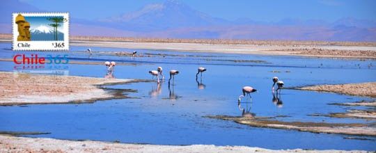 Laguna Chaxa en San Pedro de Atacama, Chile