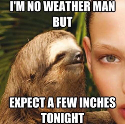 Thankyou for laughing.: Let's take a minute to enjoy some creepy sloth humor.