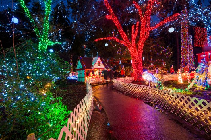 Christmas Lights in Vancouver!