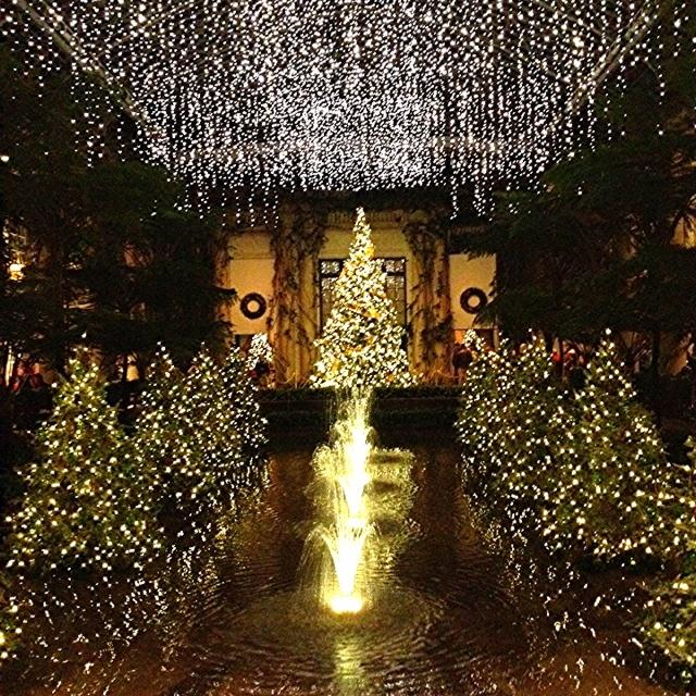 longwood gardens christmas time - Longwood Gardens Christmas Lights