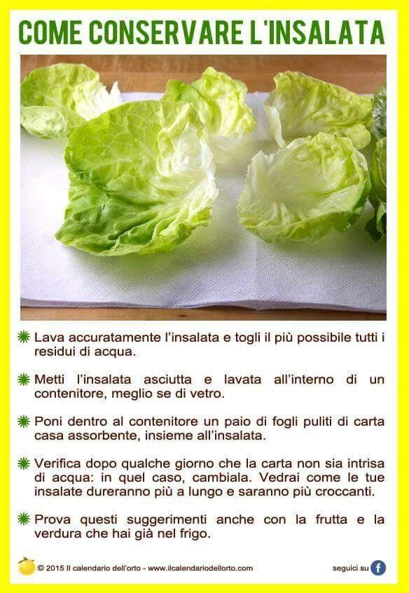 Conservare l'insalata