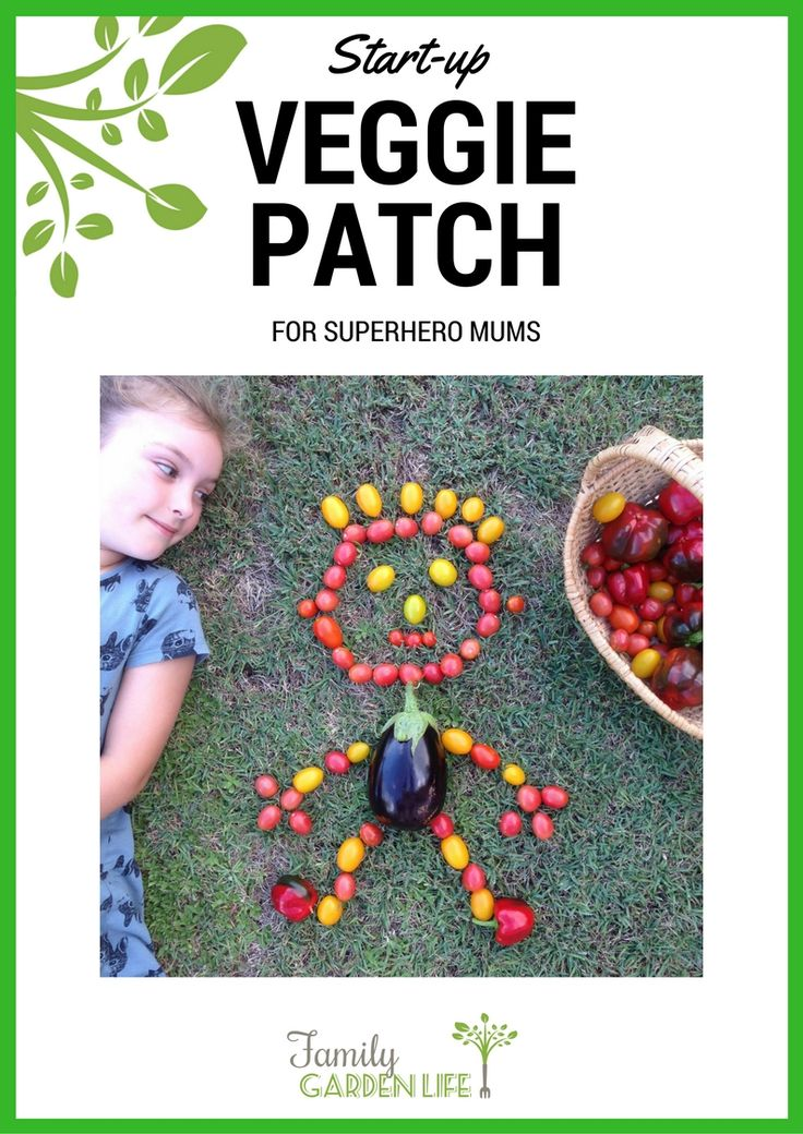 Free ebook 'Start-up Veggie Patch' ebook! Topics covered include  Plot Planning  Soil, Food & Water Planting Your Crop Why Mulch? Easiest Vegetables to Grow Companion Planting Pest Control Kids Spaces Garden Kitchen Recipes