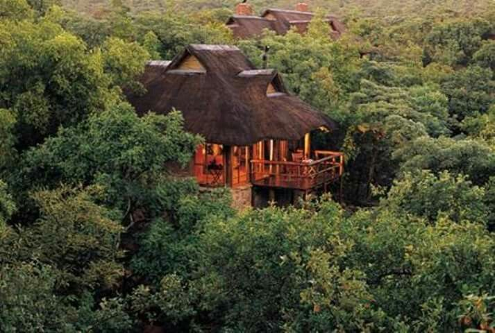 Interesting places to stay in South Africa. Makweti Safari Lodge - This luxurious, intimate camp exudes a quiet grace and charm remnant of a bygone era. Nestled deep in the rugged beauty of the Waterberg mountains, where the giant Makweti tree dominates the landscape, Makweti Safari Lodge is surrounded by pristine wilderness.....#wildlife #southafrica #photosafari #tourism #extremefrontiers #bush #adventure #holiday #vacation #safari #tourist #travel
