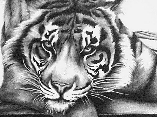 10  Cool Tiger Drawings for Inspiration, http://hative.com/tiger-drawings/,