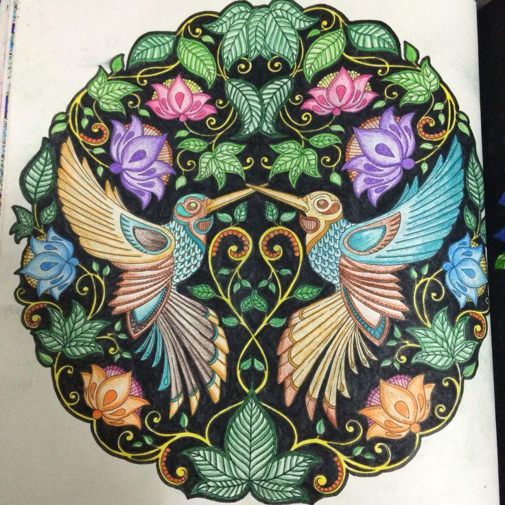 flores jardim secreto:1000+ images about Beija Flores – Jardim Secreto on Pinterest