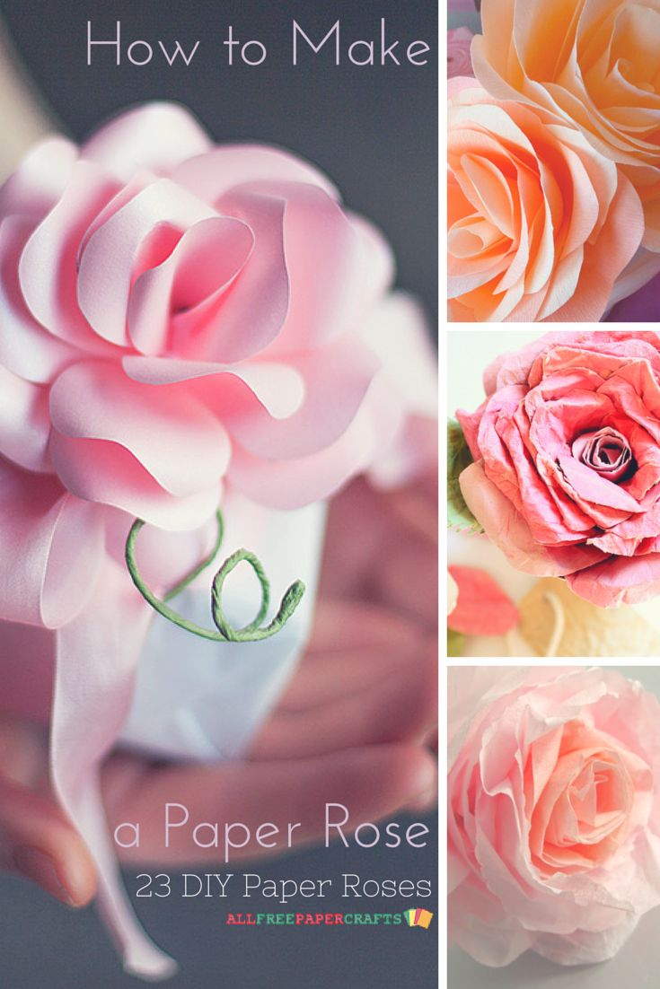 The 292 Best How To Make Paper Flowers Images On Pinterest Paper