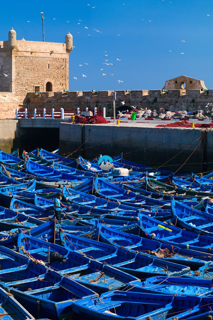 Nador morocco tourism investment buy ralph lauren puffer vest