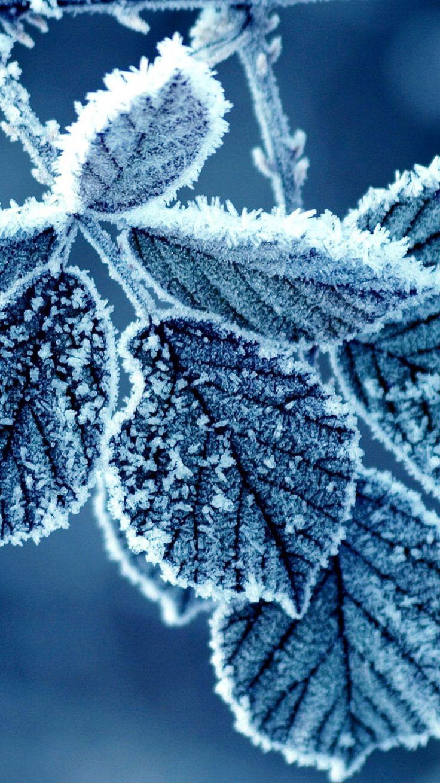 The 25 best Winter wallpaper hd ideas on Pinterest Hd iphone 6