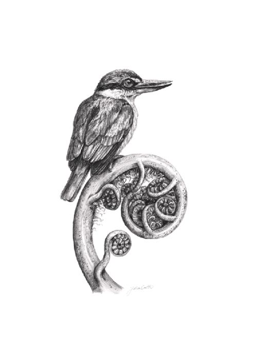 Professional Art Print A4 – Hand drawn illustration 'Kingfisher'   Felt