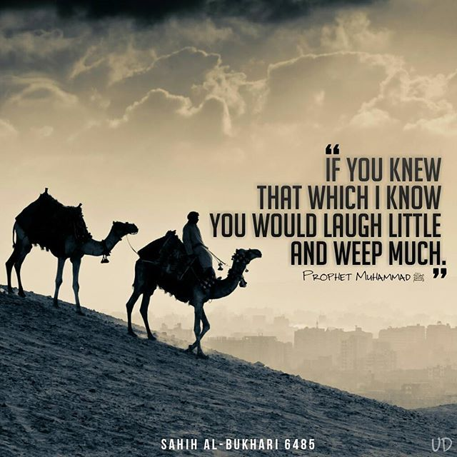"""Narrated Abu Huraira:  Allah's Messenger (ﷺ) said, """"If you knew that which I know you would laugh little and weep much.""""  Reference : Sahih al-Bukhari 6485 In-book reference : Book 81, Hadith 74 USC-MSA web (English) reference : Vol. 8, Book 76, Hadith 492"""