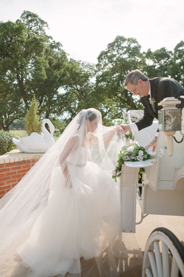 Just beautiful.  I wish one of my brides would hire a horse and carriage.