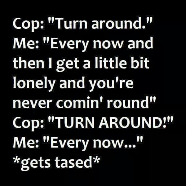 I never ever plan on getting arrested but that would be hilarious! Well not the taser part.