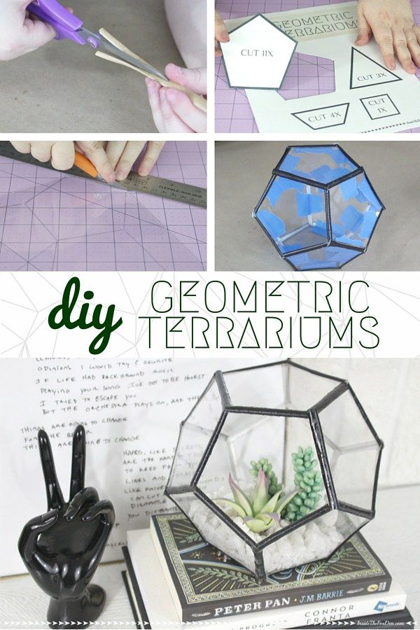When friends and family see this DIY Geometric Terrarium on your shelf, they're…