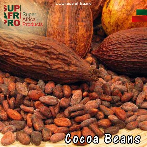 99 Best Images About All About Cocoa On Pinterest