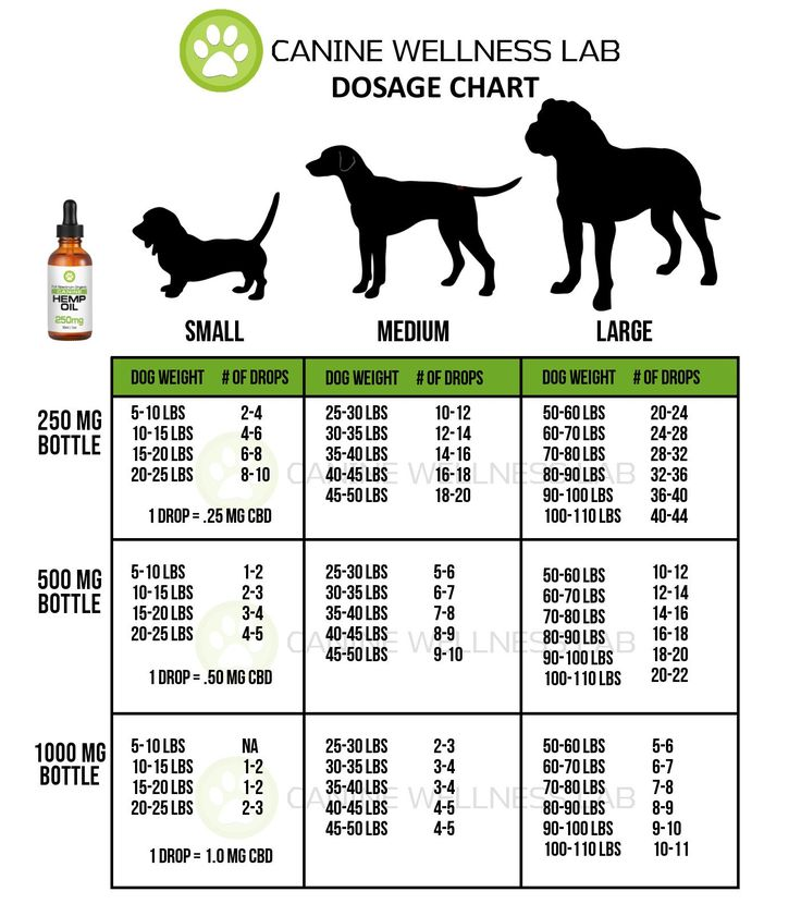 CBD Oil Dosage Chart for Dogs and Cats Canine Wellness