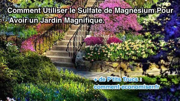 Le sulfate de magnésium est une solution écologique et économique pour entretenir votre jardin — avec des résultats spectaculaires ! Voici les 10 bienfaits du sulfate de magnésium pour toutes vos plantes :-)  Découvrez l'astuce ici : http://www.comment-economiser.fr/astuce-beau-jardin-sulfate-magnesium.html?utm_content=bufferae816&utm_medium=social&utm_source=pinterest.com&utm_campaign=buffer