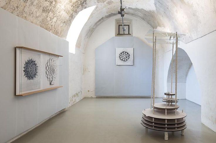 Michele Guido's exhibition in Gagliano del Capo, curated by Lorenzo Madaro, 2016