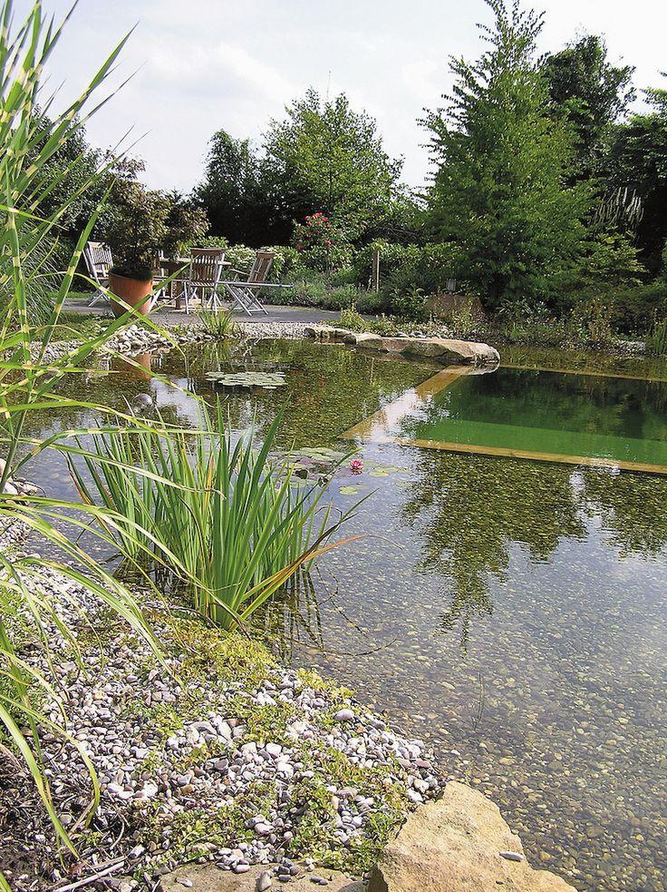 Přírodní koupací jezírko patří mezi elegantní prvky zahradní architektury…