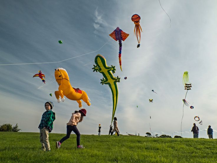 https://flic.kr/p/Hfpief | Let's go fly a kite. | M J Savage Memorial Park, Auckland.