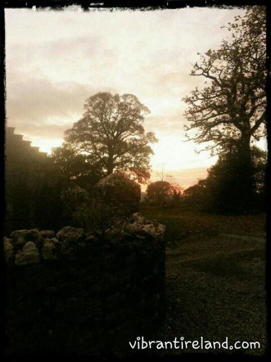 Enchanted dusk behind the magical Huntington Castle  Clonegal, co. Carlow, Ireland