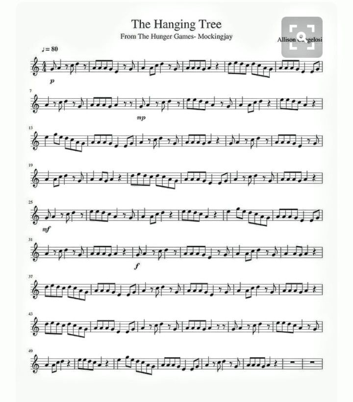 Best 25 Trumpet Music Ideas On Pinterest: 25+ Best Ideas About Marching Band Humor On Pinterest