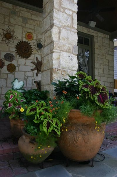 Texas landscaping in pots